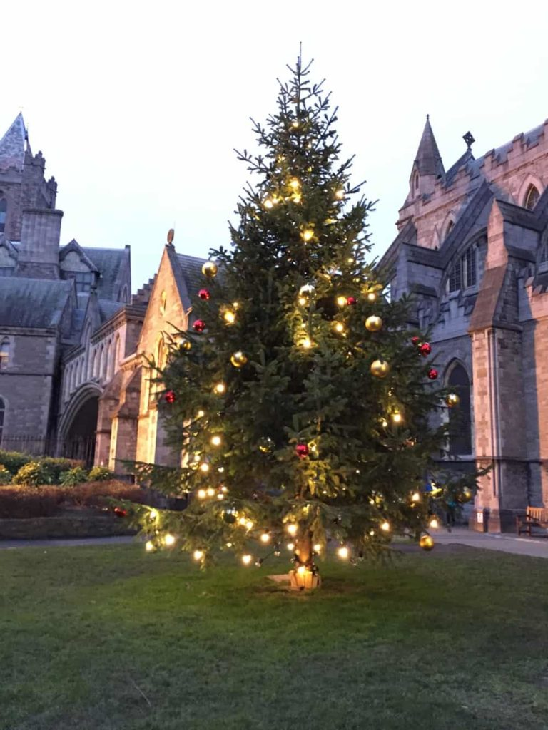 christmas tree in front of Christ Church Cathedral