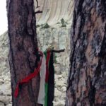 Seven Strange Facts About Devils Tower