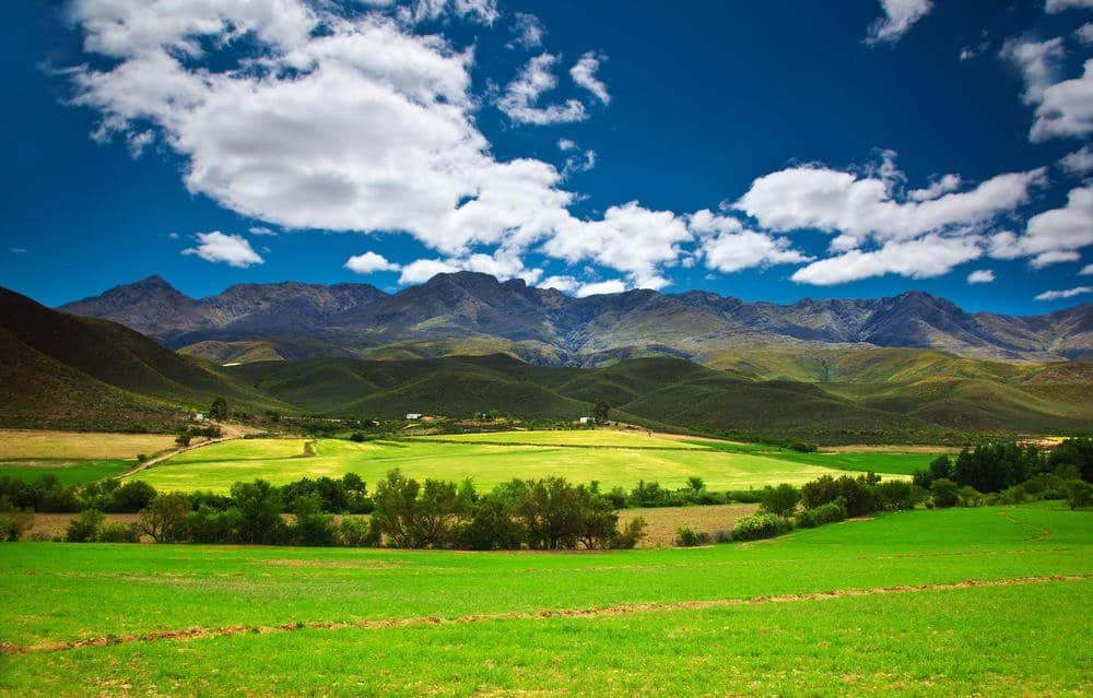 Twelve Things That Surprised Me About South Africa