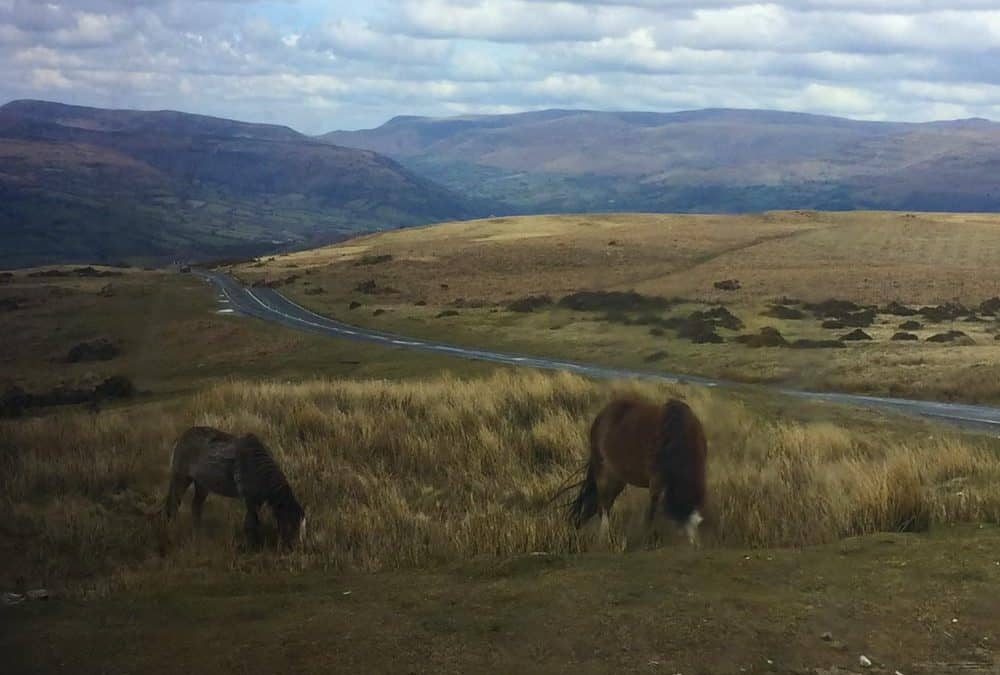 Soft Adventure in the Brecon Beacons National Park in Wales