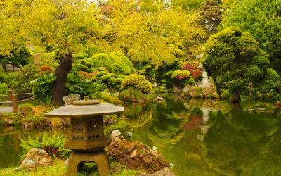 In Photos:  The Japanese Tea Garden in Golden Gate Park