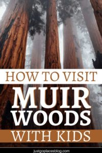 Muir Woods, California is a great place to visit, with or without kids. The trees are majestic, and the landscapes are so pretty! You can opt for a Muir Woods day trip from San Francisco or spend the weekend in the area. Read on for tips & tricks for visiting the California Redwoods with kids. #california #redwoods #muirwoods #kidfriendly