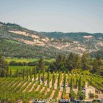 Visiting Castello di Amorosa, A Family Friendly Vineyard in Napa Valley