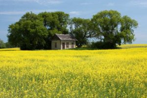Roadtrips Retracing The Laura Ingalls Wilder Books
