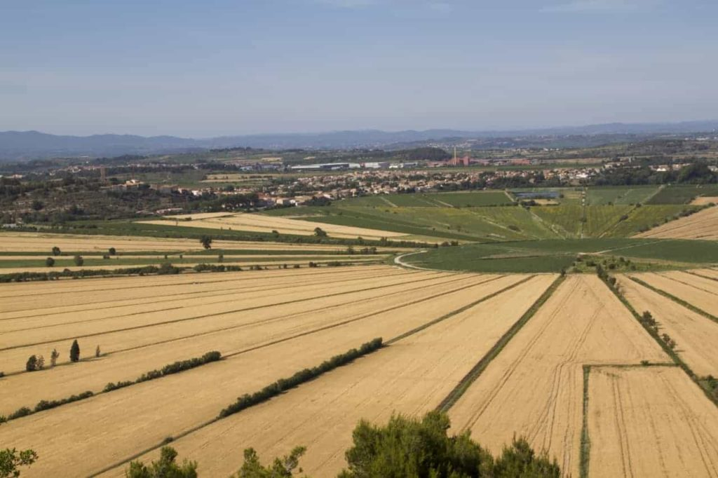 Montady in the Languedoc-Rousillon