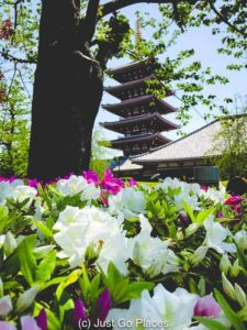 The 5 tier pagoda seen from the gardens of Sensoji in Tokyo