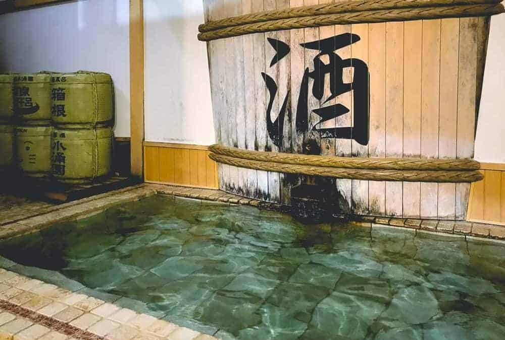 Why We Loved Our Hakone Onsen Day Trip to Kowakien Yunessun (And You Will Too!)