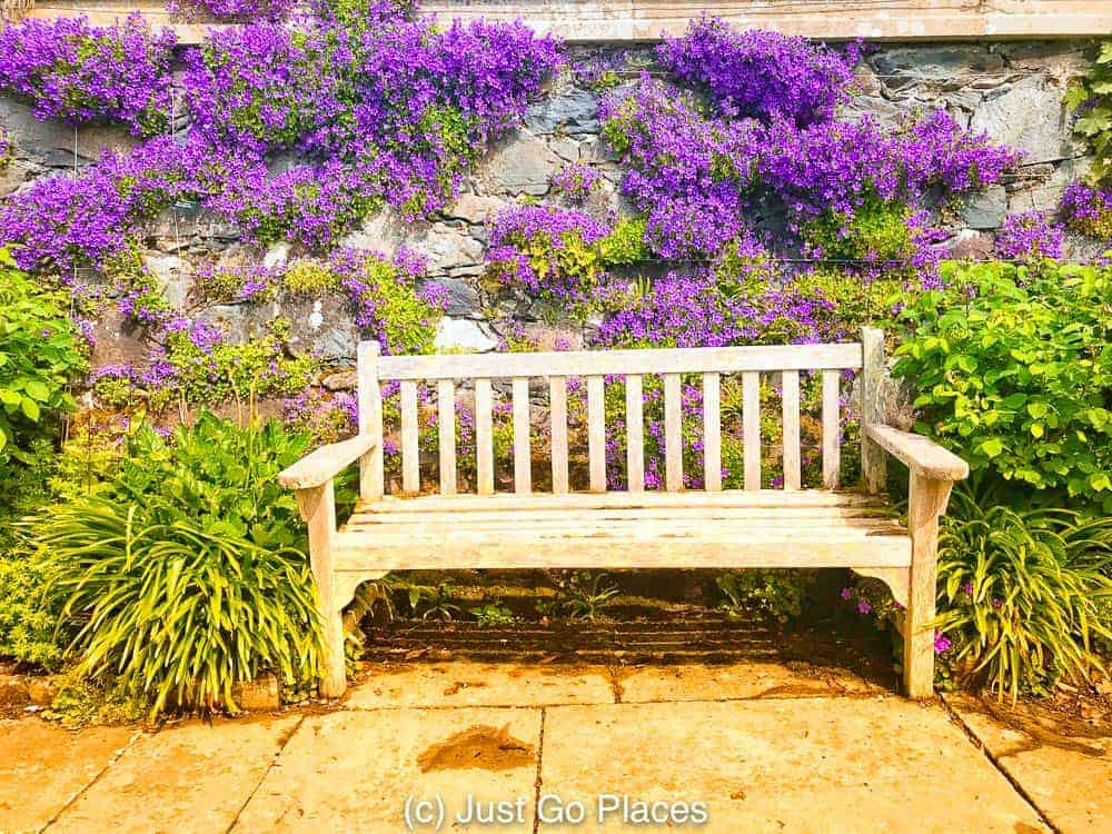 Have a seat and smell the wisteria at Bodnant Gardens Wales