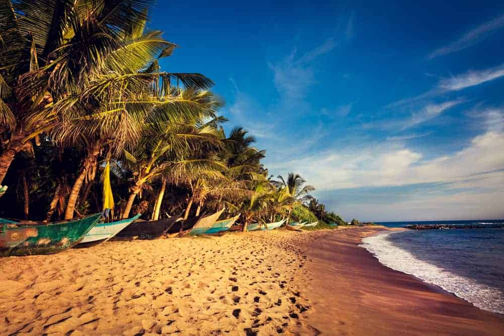 Mirissa in South Sri Lanka is perfect for a beach holiday in Sri Lanka