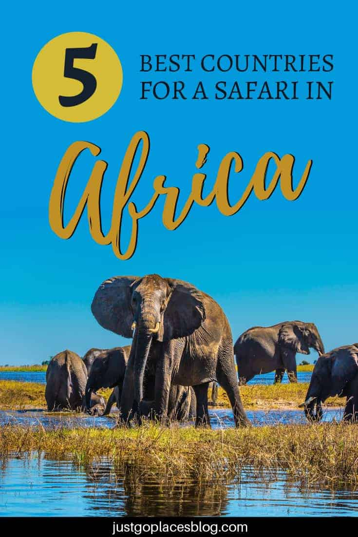 African safari adventures are often a once in a lifetime opportunity for many people. We are often asked what are the best African safari countries. or the best place to go on safari in Africa, you should consider a safari in Southern or East Africa. Here there are many options depending on what type of wildlife you want to see. Check out the best safari destinations in Africa if you are considering a family safari (or even if you don't have children with you!). #africa #safari #kidfriendly