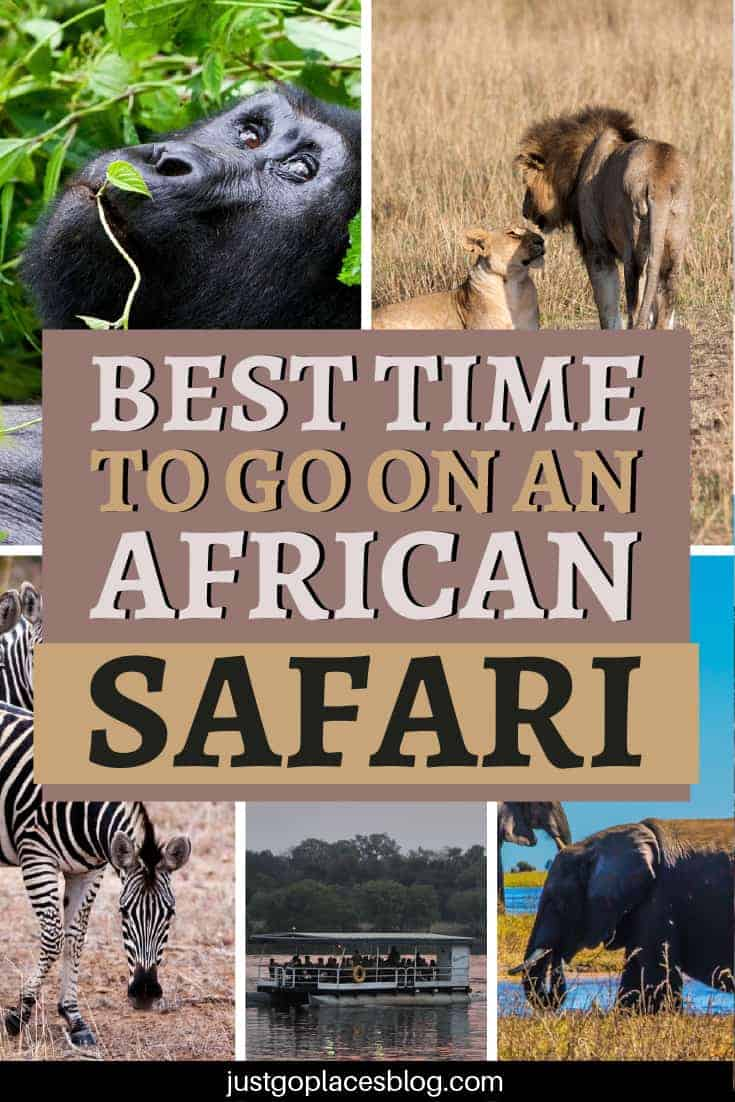 The Best Time To Go On An African Safari