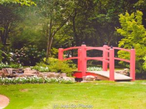 Bet you didn't think there would be a Japanese garden in the Old Decatur Historic District did you?