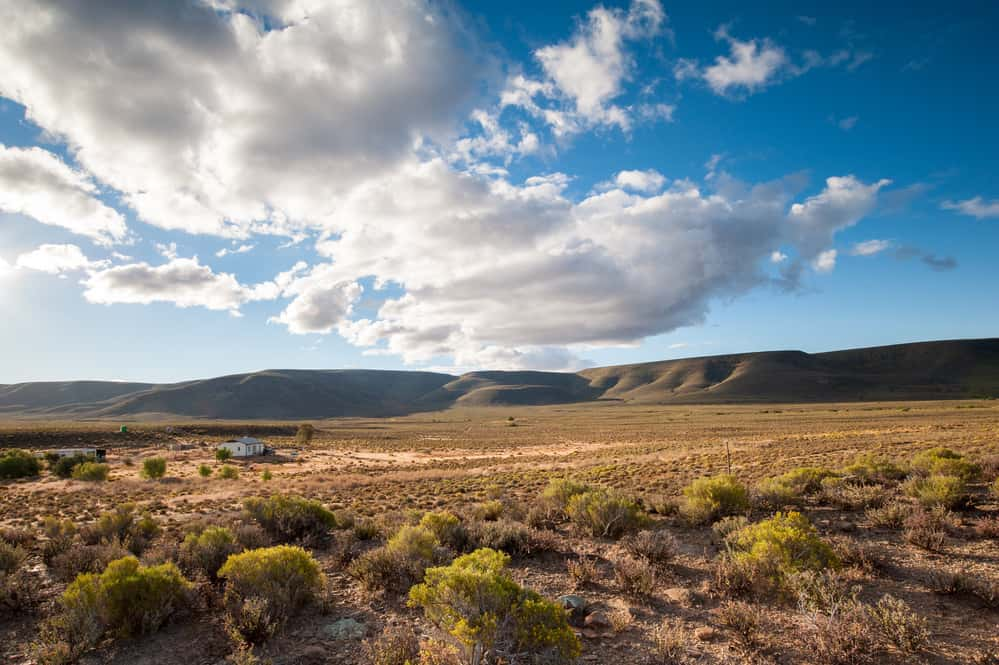 the desert at Karoo National Park