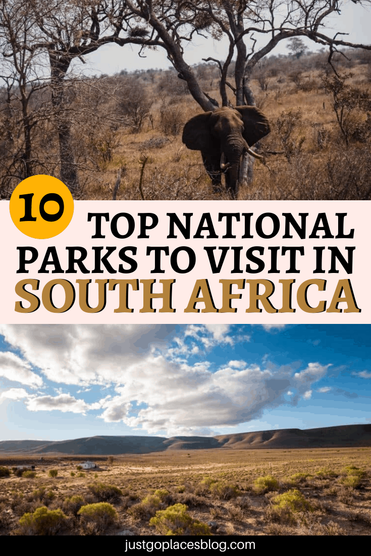 10 Top National Parks To Visit in South Africa