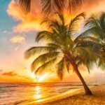 The Best Places To Travel in February in USA (+ the Americas) for February Sunshine  Holidays