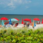 9 Free Things To Do in Naples Florida (Including With Kids!)