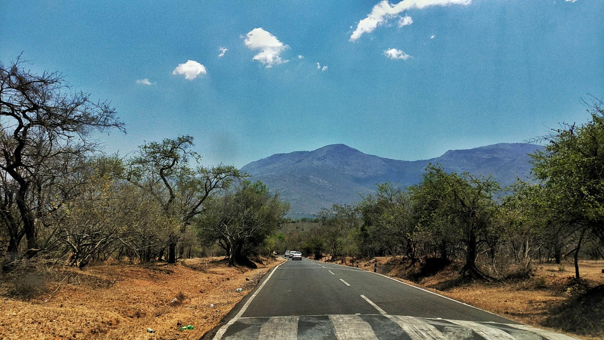 on the road to Bandipur Tiger Reserve