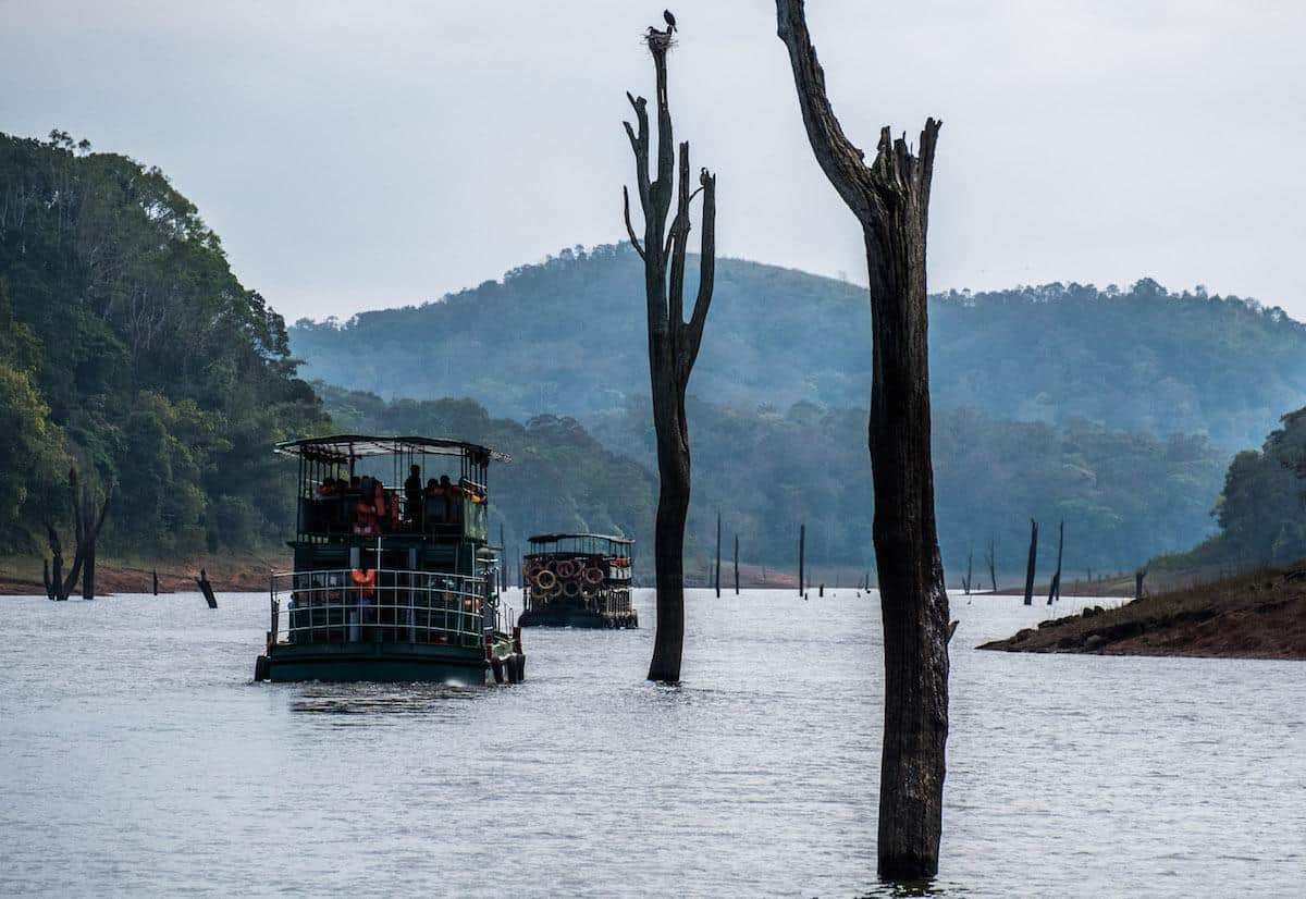 A boat cruise on Periyar Tiger Reserve