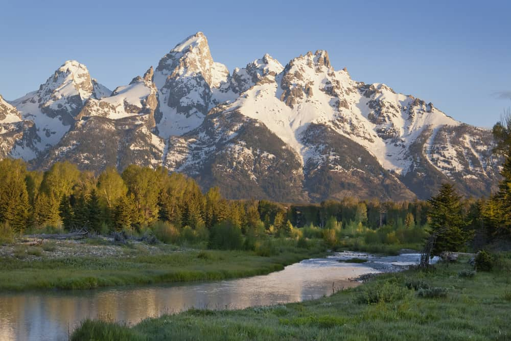 The Grand Teton Mountains with stream and trees