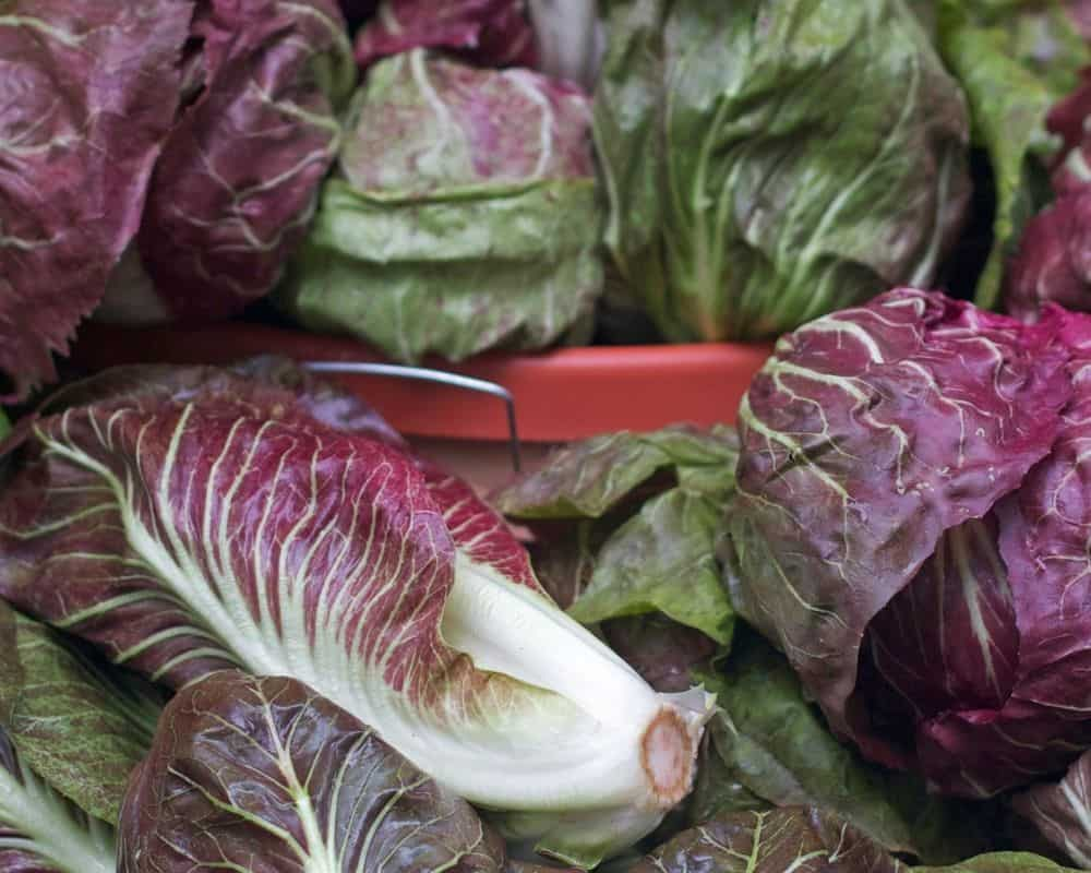 Treviso red lettuce at a market