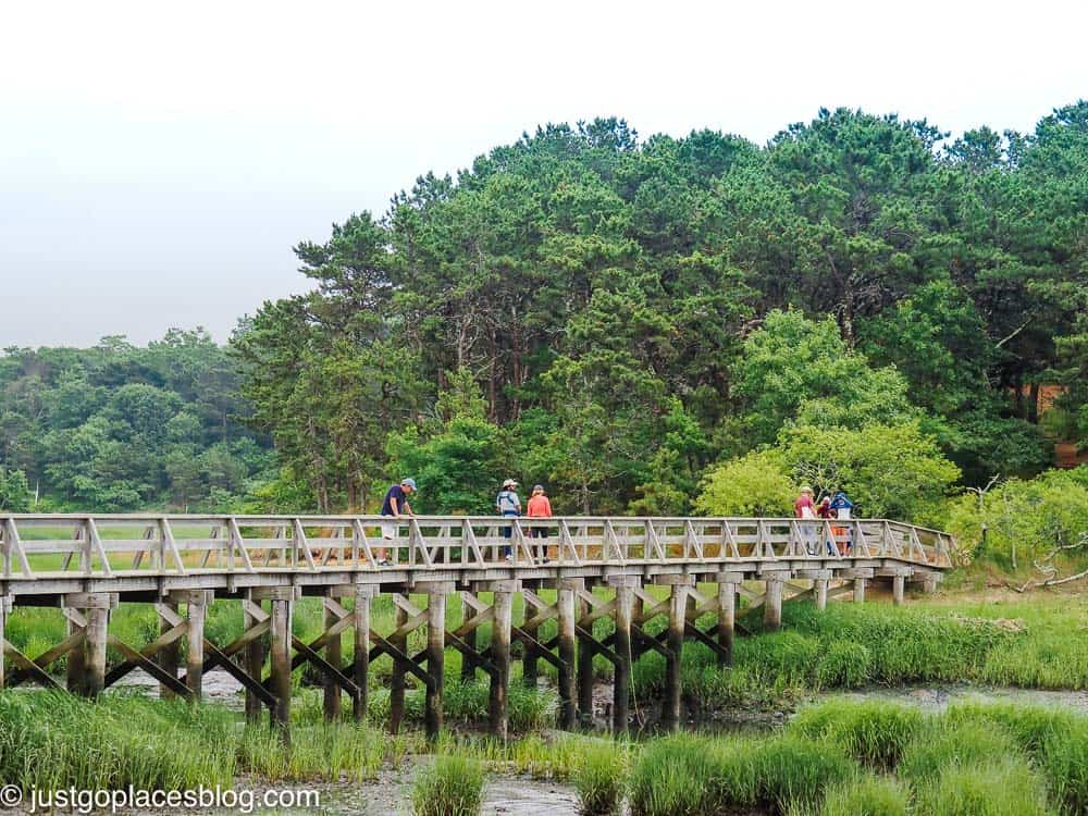 bridge over marshy pond with walkers